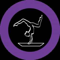 Buckhead Gymnastics & Cheer - Atlanta, Georgia gymnastics