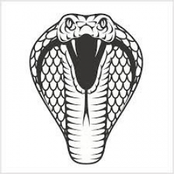 Rattlesnake Head Drawing at PaintingValley.com | Explore ...