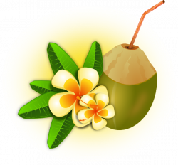 Tropical Flower With Coconut Drink Clip Art at Clker.com - vector ...