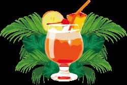 Cocktail Orange juice Mai Tai Orange drink - Summer orange juice ...