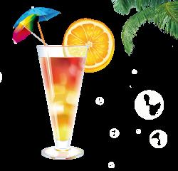 Cocktail Juice Mojito Screwdriver Tequila Sunrise - Glass of ...