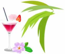 Wine cocktail Cosmopolitan Martini Cocktail garnish - Romantic ...