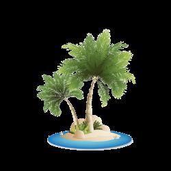 Palm Islands Arecaceae Clip art - coconut tree 2362*2362 transprent ...