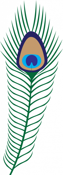 Peacock Feather Coloring Page | Clipart Panda - Free Clipart Images