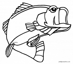 Bass Fish Coloring Pages   Clipart Panda - Free Clipart Images