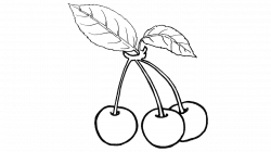 21 Prodigious Cherry Clipart Free - Fruit Names A-Z With Pictures