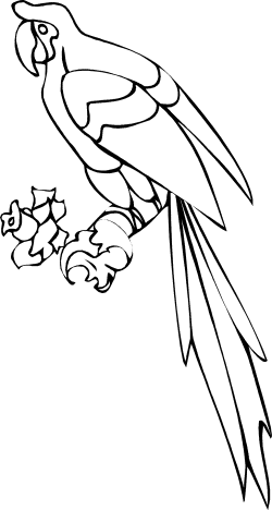 Parrot Coloring Pages | Clipart Panda - Free Clipart Images
