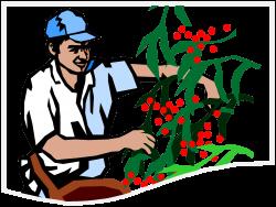 State of Oregon: Farm Labor