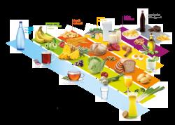 Power-food pyramid - Eat healthy - Recipes - AMC premium cooking ...