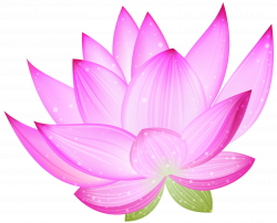 PNG FLORES - Pesquisa Google | ЛОТОСЫ | Pinterest | Searching
