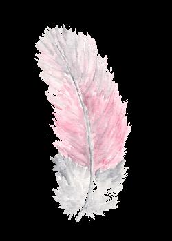 plumas vitange png tumblr - Buscar con Google   ART   Pinterest ...