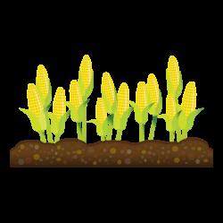 clipartist.net » Clip Art » Abstract Crops Corn Scalable Vector ...