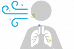 How to limit the spread of flu by cleaning the air | Aeramax ...