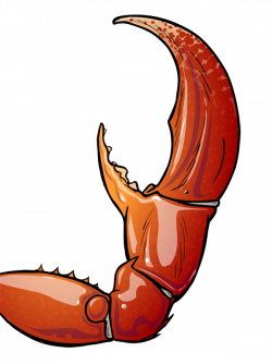 Crab clipart arm ~ Frames ~ Illustrations ~ HD images ~ Photo ...