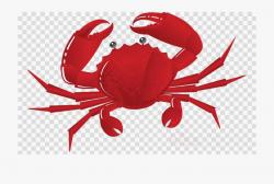 Crab Clipart Chilli Crab - Crab Clip Art, Cliparts ...
