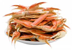 Crab PNG images free dowbload