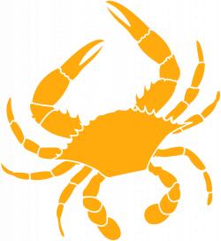 39 units of Crab Images