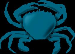Blue crab clipart - crazywidow.info
