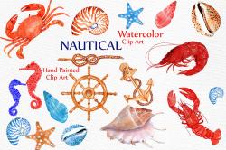 Nautical Watercolor Clipart BEACH ANIMALS CLIPART Watercolor crabs  Crustacean Clip Art Lobster clipart