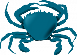 Blue Crab Clipart at GetDrawings.com | Free for personal use Blue ...