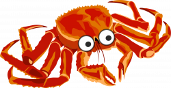 28+ Collection of Crab Clipart Transparent   High quality, free ...