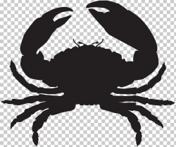 Florida Stone Crab Seafood Oyster Lobster PNG, Clipart ...