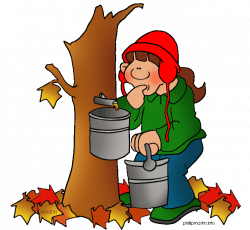 Maple Syrup - Free Games & Activities for Kids | Teaching Ideas ...