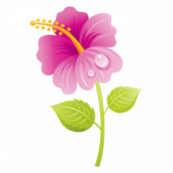 flowers png | buncee clipart mothers day flower | SYEDIMRAN ...