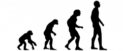 Evolution Of Man Silhouette at GetDrawings.com | Free for personal ...