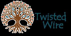 Dreamcatcher Boho Feather Earrings – Twisted Wire