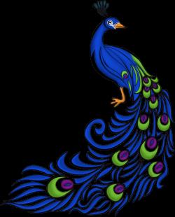 Transparent Peacock Feather Clip Art - Border Design For ...