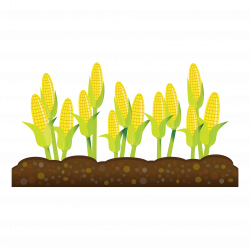 28+ Collection of Crop Rows Clipart | High quality, free cliparts ...