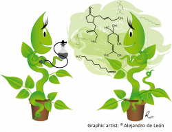 Optimizing Crops for Biocontrol of Pests and Disease | Plant Science ...