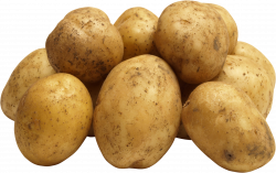 Potato PNG Image - PurePNG | Free transparent CC0 PNG Image Library
