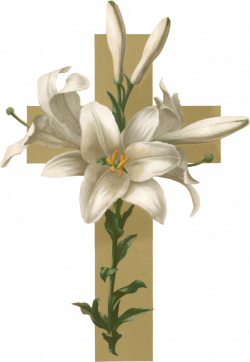 Easter lily Christian cross Flower Funeral Clip art - lily 745*1080 ...