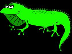19 Iguana clipart HUGE FREEBIE! Download for PowerPoint ...