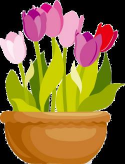 fleurs,flores,flowers,bloemen,png | Растения клипарт | Pinterest