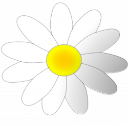 Daisy clipart coloured flower ~ Frames ~ Illustrations ~ HD images ...
