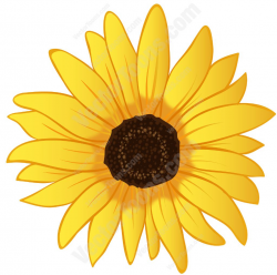 Yellow Daisy Clipart | Free download best Yellow Daisy ...