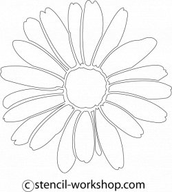 Daisy Drawing Tumblr at GetDrawings.com | Free for personal use ...