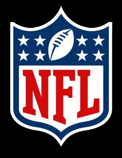 NFL Auction   Dallas Cowboys