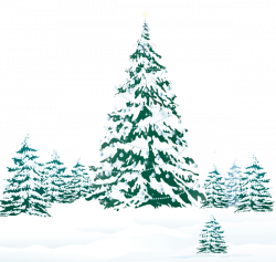 Snowy Winter Ground with Trees PNG Clipart Image | New Year ...