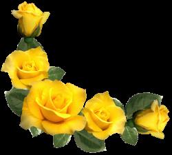 Beautiful Yellow Roses Decor PNG Clipart Image | Róże | Pinterest ...
