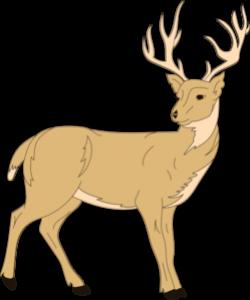 Deer With Fur Clip Art at Clker.com - vector clip art online ...