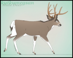Free Walking Deer Cliparts, Download Free Clip Art, Free ...