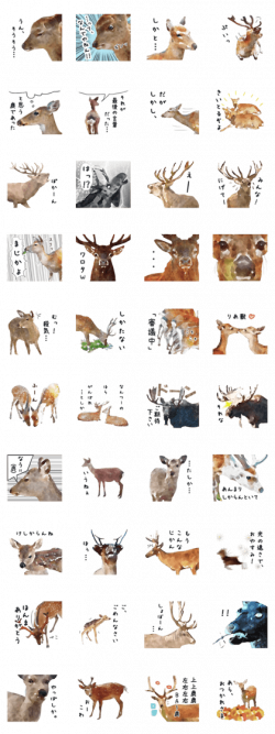 LINE Creators' Stickers - Watercolor deer sticker