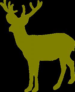 Deer Graphics (48+) Deer Graphics Backgrounds