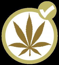 Marijuana Party (Canada) - Wikipedia