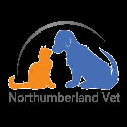 Dentistry – Northumberland Veterinary Services