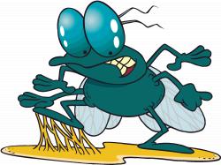 Pest Control – 50 Symptoms Gone